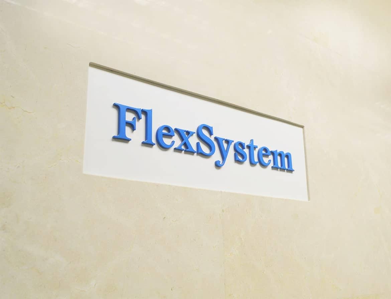 FlexSystem_overview